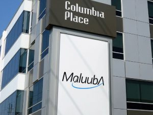 maluuba office waterloo columbia place