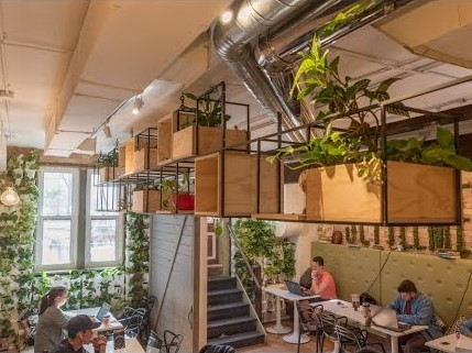 Cafe interior with plants