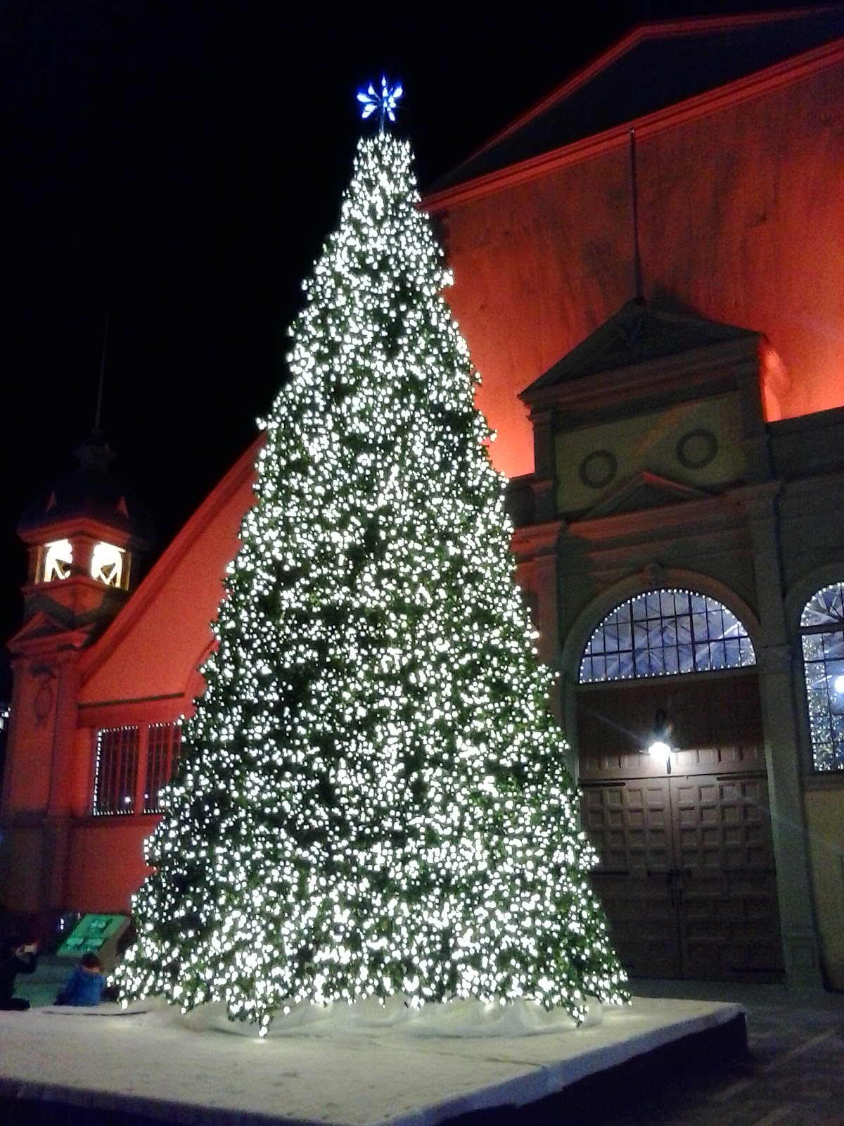Christmas Tree at Lansdowne