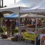 Lansdowne Farmer's Market, Ottawa – Supporting Local Farmers and Producers!
